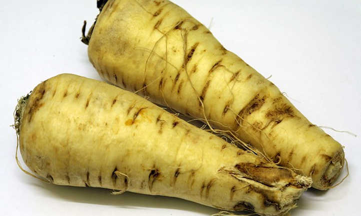 Parsnips with damaged tips