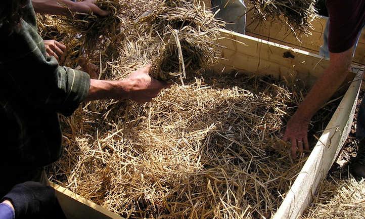 Mulching a raised bed