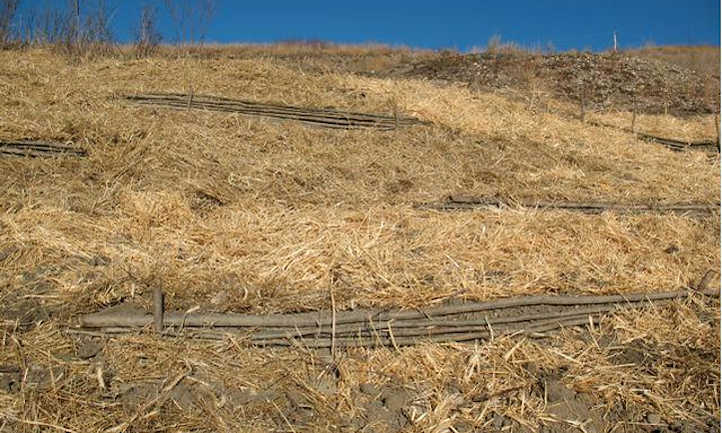 Straw for protection against erosion
